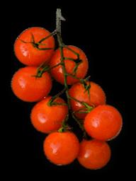 pomidory dietetyczne